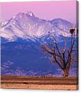 The Eagles And The Peaks Canvas Print