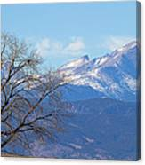 The Eagle's View Canvas Print