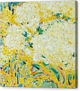 The Elderflower Tree Oil On Canvas Canvas Print