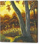 The Elders Canvas Print