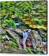 The Emerald Forest 14 Canvas Print