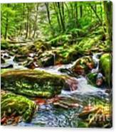 The Emerald Forest 15 Canvas Print
