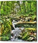 The Emerald Forest 3 Canvas Print