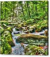 The Emerald Forest 4 Canvas Print