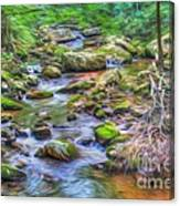 The Emerald Forest 6 Canvas Print