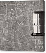 The Emotional Wall Canvas Print