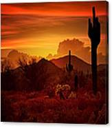 The Essence Of The Southwest Canvas Print