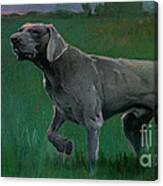 The Evening Hunt  Canvas Print