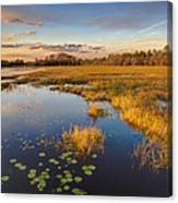 The Everglades Canvas Print