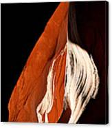 The Eye Of Lower Antelope Canyon Canvas Print