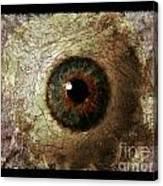 The Eyes 12 Canvas Print