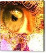 The Eyes 4 Canvas Print