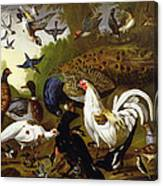 The Fable Of The Raven With A Peacock, Cockerel, Woodpecker, Jay, Woodcock, And Magpie Canvas Print