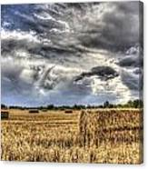 The Farm In The Summer Canvas Print
