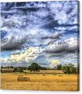 The Farm In The Summertime  Canvas Print