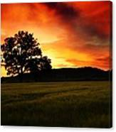 the Fire on the Sky Canvas Print