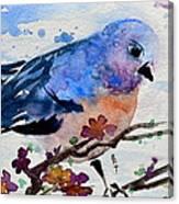 The First Bluebird Canvas Print