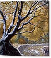 The First Snow Idaho Canvas Print