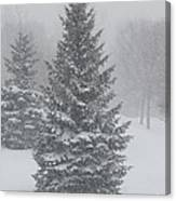 The First Snow Of Christmas Canvas Print