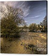 The Floods At Stoke Canon  Canvas Print