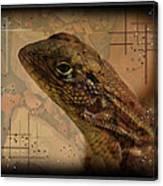The Florida Lizard Canvas Print