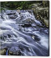 The Flow Canvas Print