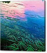 The Flow - Paint Canvas Print