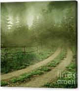 The Foggy Road Canvas Print