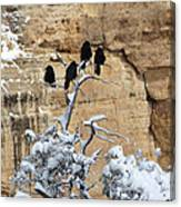 The Four Crows Canvas Print