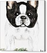 The Frenchton Canvas Print