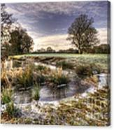 the  Frosty Field  Canvas Print