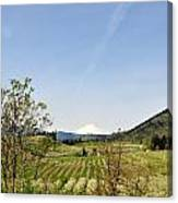 The Fruits Of  Mount Hood Canvas Print