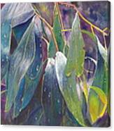 The Gentle Rain Canvas Print