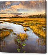 The Glades At Sunset Canvas Print