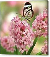 The Glasswing Canvas Print