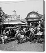 The Goat Carriages Coney Island 1900 Canvas Print