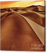 The Golden Hour Anza Borrego Desert Canvas Print