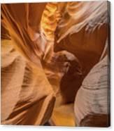 The Golden Passage Way Canvas Print