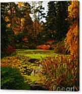 The Golden Pond Canvas Print