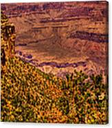 The Grand Canyon II Canvas Print