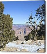 The Grand Canyon In January Canvas Print