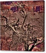 The Grand Canyon Viii Canvas Print