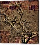 The Grand Canyon Vintage Americana V Canvas Print