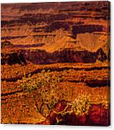 The Grand Canyon X Canvas Print