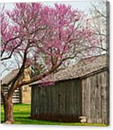 The Gray Campbell Farmstead Canvas Print