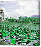 The Great Lotus Flower Pond Canvas Print