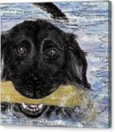 The Great Swim Canvas Print