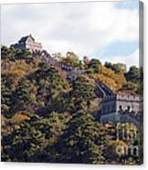 The Great Wall 632c Canvas Print