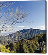 The Great Wall 834 Canvas Print