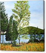 The Grey Camp Beech Hill Pond Canvas Print